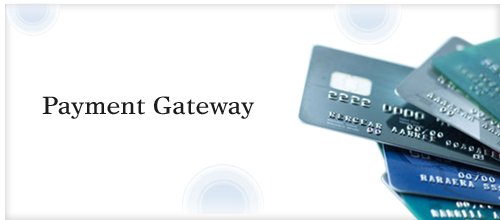 Payment Gateway Integration Solutions